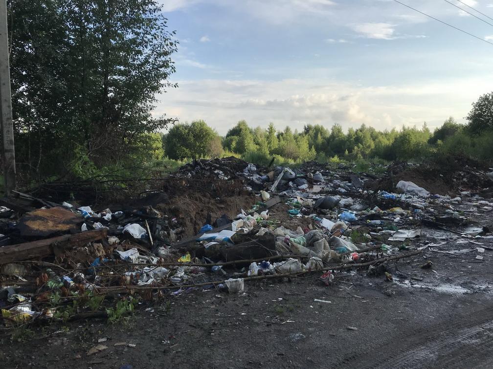 В Ярославле прокуратура требует убрать свалку в Дзержинском районе