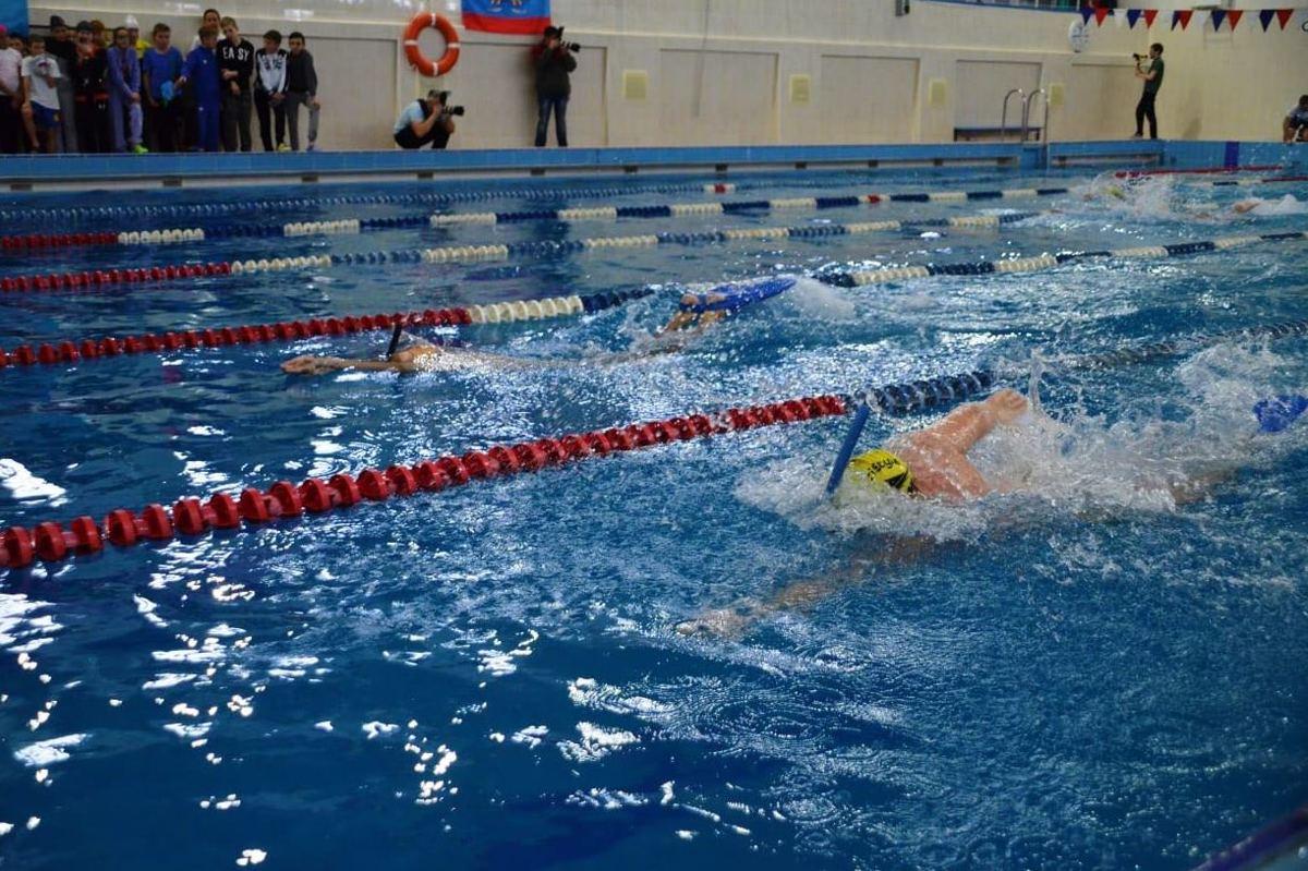Около 300 юных спортсменов со всего региона принимают участие в фестивале по плаванию