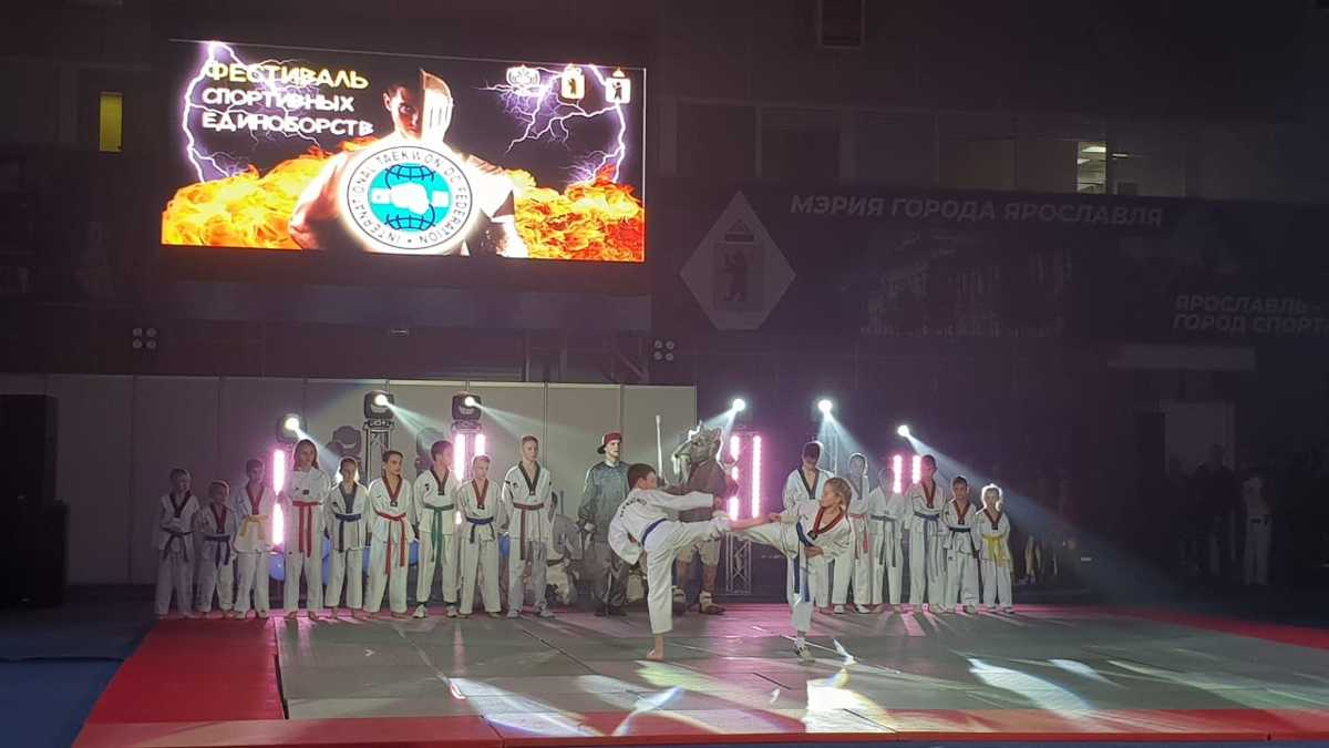 Дмитрий Миронов принял участие в открытии фестиваля спортивных единоборств