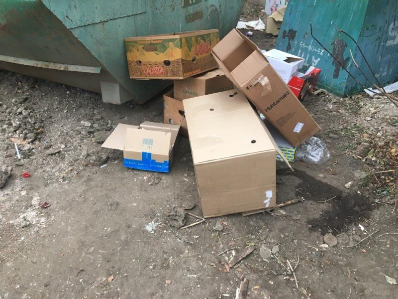 В Рыбинске установят 230 новых контейнеров для сбора мусора