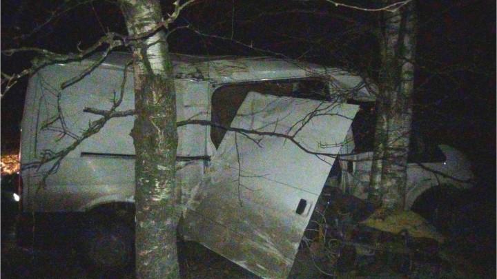 В Ярославской области микроавтобус врезался в дерево: двое пострадавших