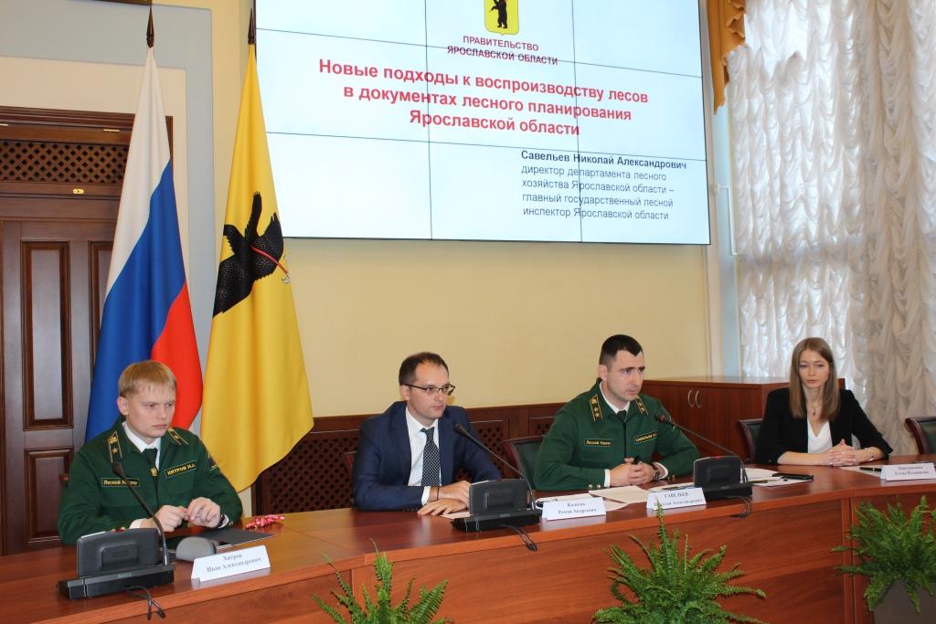 За год объем незаконных рубок в Ярославской области сократился в 2,4 раза