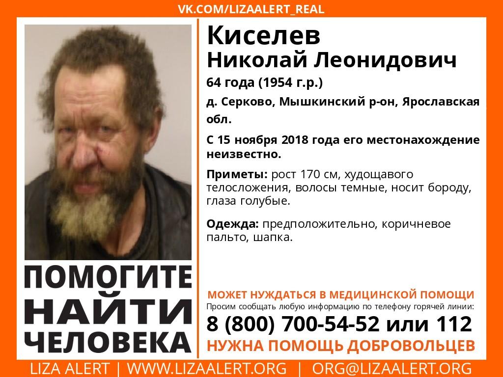 В Ярославской области пропал пенсионер