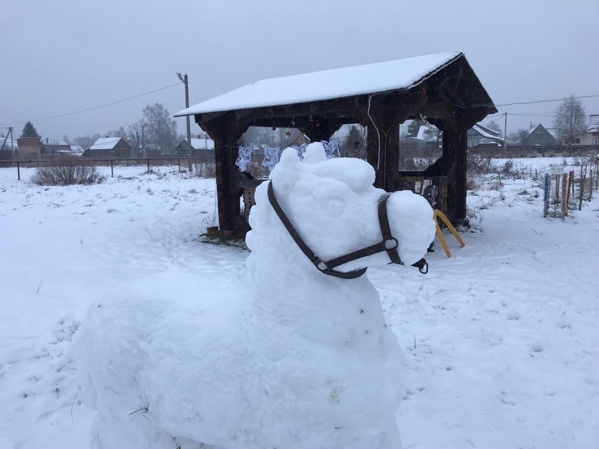 В Ярославской области появляются креативные снеговики