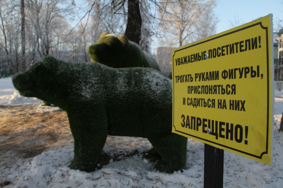 В Рыбинске мэр встретился с подростками, устроившими фотосессию на медведях