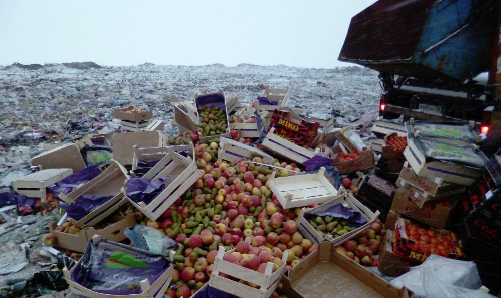 В Ярославской области уничтожили более двух тонн санкционных продуктов