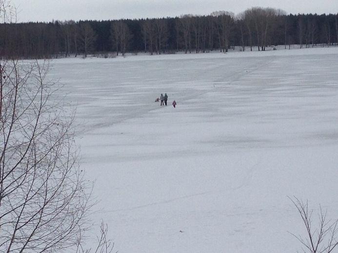 Двое детей со взрослыми попытались перейти Волгу по тонкому льду в Ярославле