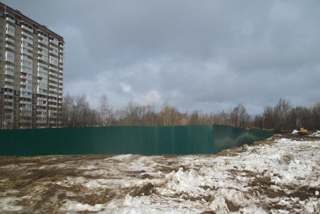 Строительство не затронет особо охраняемую территорию Павловской рощи в Ярославле