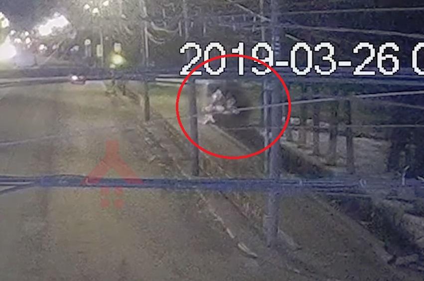 В центре Ярославля пьяный водитель влетел в столб: появилось видео ДТП