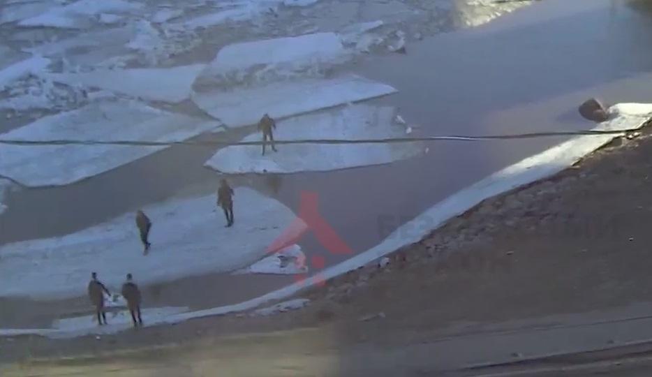 На Которосли в Ярославле подростки прыгают с одной льдины на другую: видео
