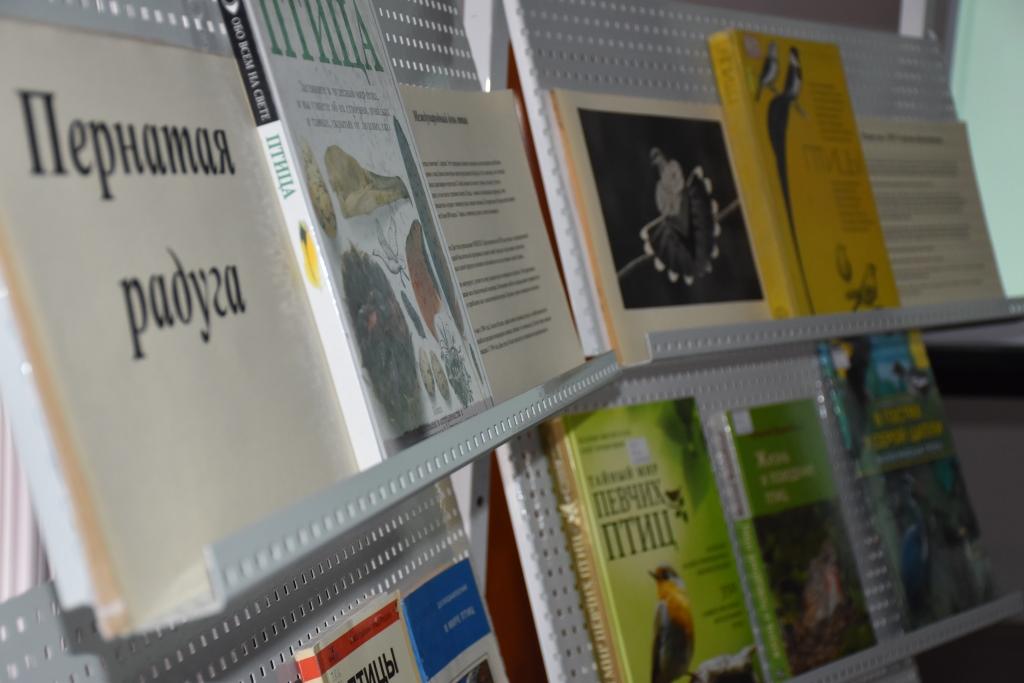 Более 400 учащихся приняли участие в экологических акциях по охране птиц