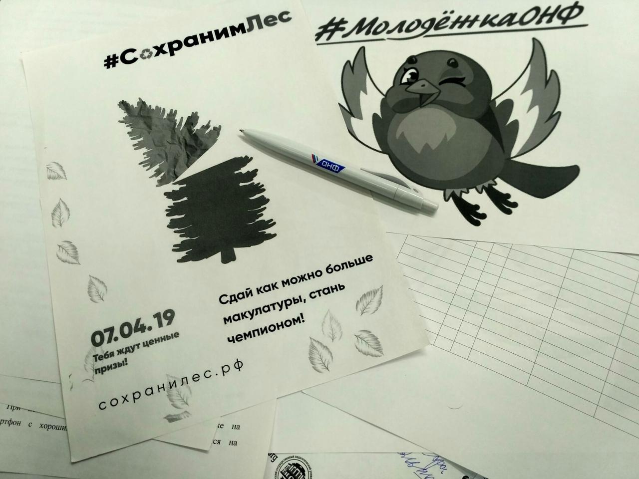 Ярославцы в рамках всероссийской акции смогут сдать макулатуру: адреса