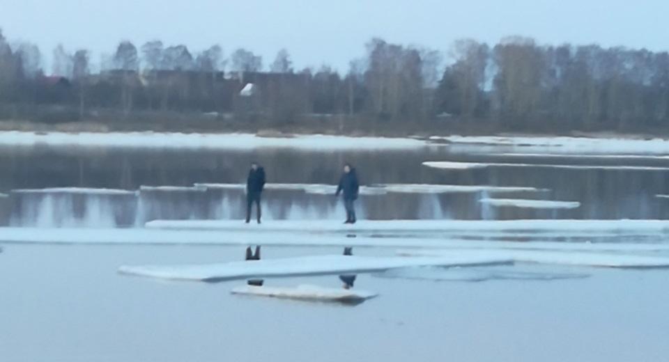 Мамонтята: в Рыбинске двух подростков на льдине унесло к середине Волги