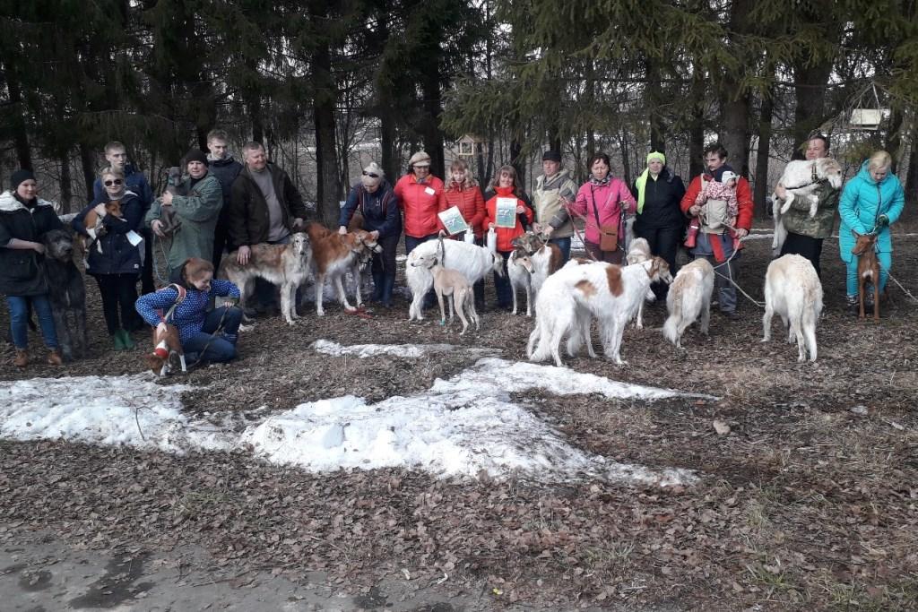 В Ярославской области прошла реконструкция охоты Ивана Грозного и состоялся парад собак
