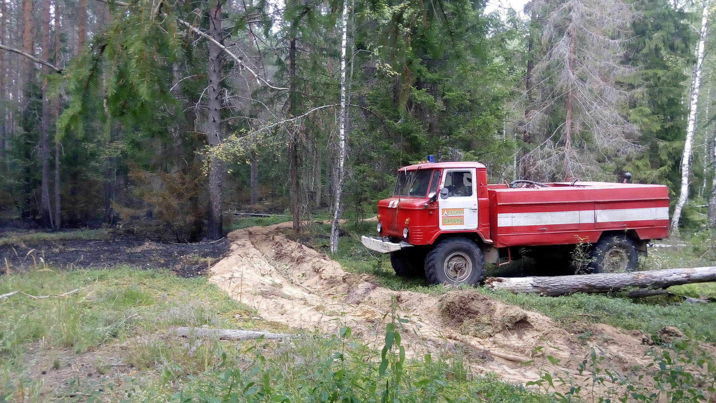 С 15 апреля на территории Ярославской области объявлен пожароопасный сезон