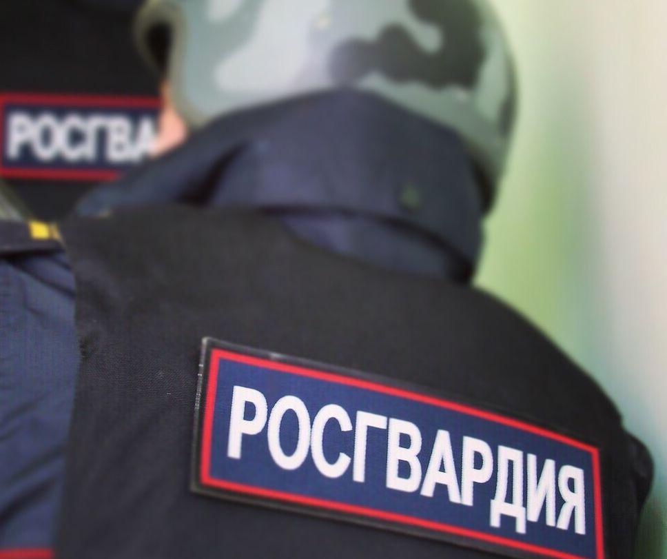 В Ярославле сотрудники Росгвардии задержали мужчину за поджог травы и деревьев