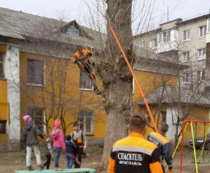 В Ярославле спасатели помогли детям снять с дерева мяч