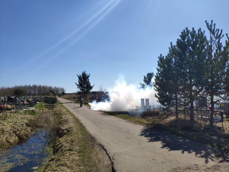 Парки и скверы Рыбинска начали обрабатывать от клещей