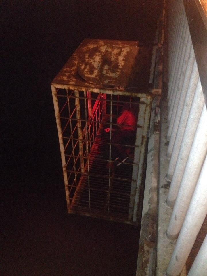 В клетке под Октябрьским мостом в Ярославле обнаружили человека