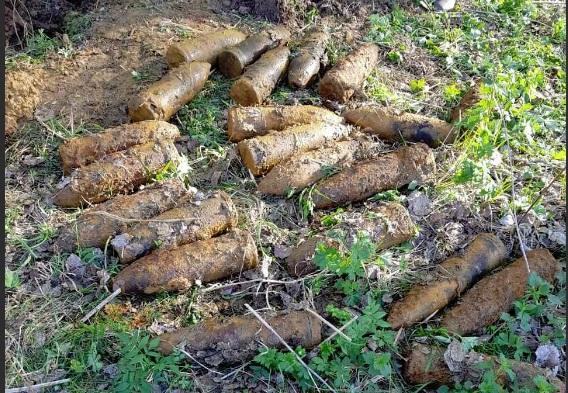 В Ярославской области в 13 метрах от железнодорожных путей обнаружили 35 снарядов времен ВОВ