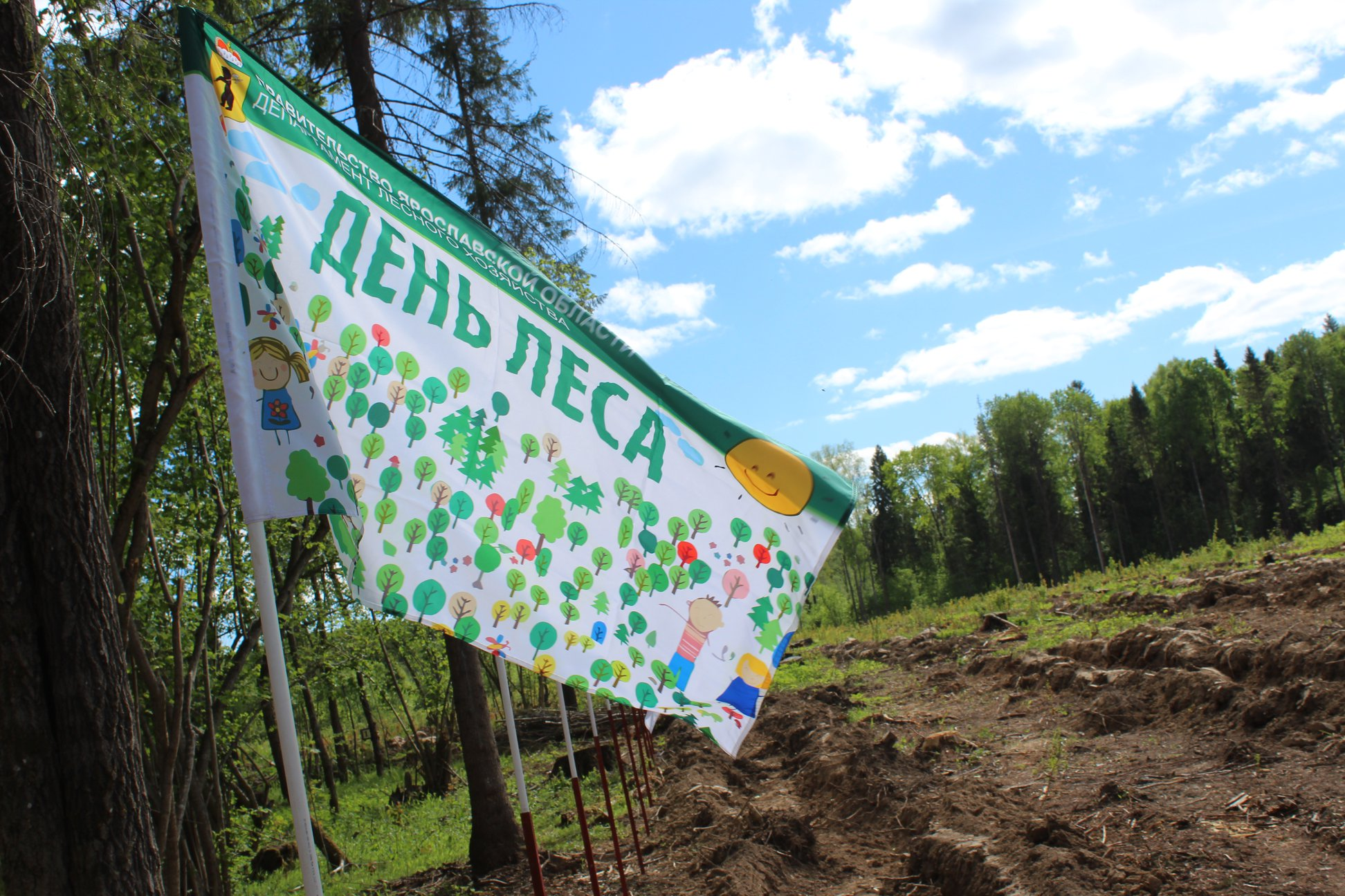 Ярославцы присоединились к всероссийской акции «День посадки леса»