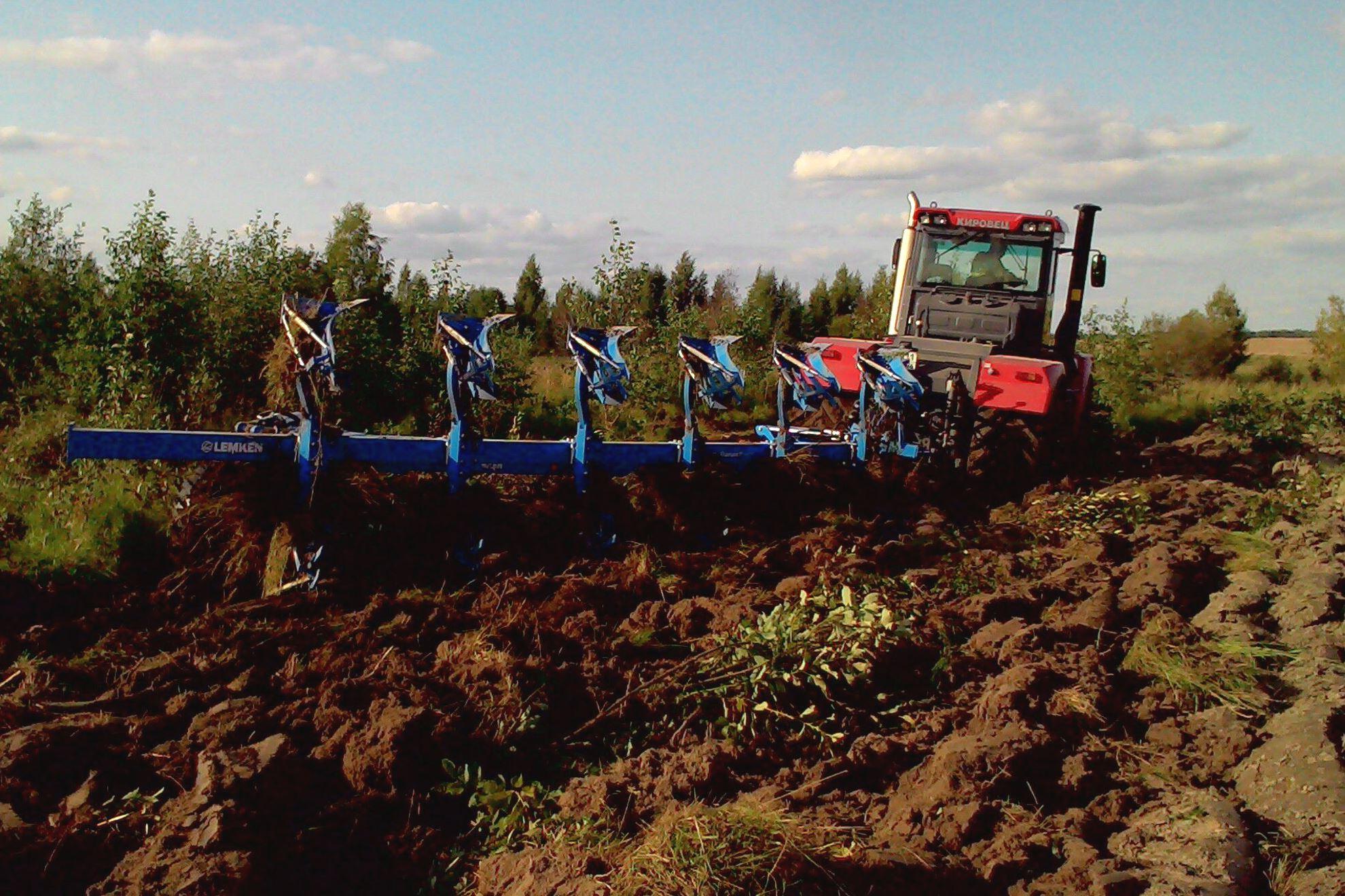 В этом году зерновые и зернобобовые культуры в регионе высадят на площади 56 тысяч гектаров