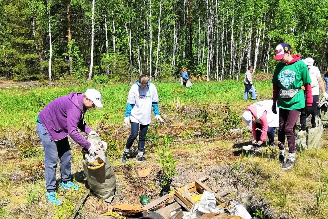 В Ярославской области стартовала экологическая акция «Очистим лес от мусора»