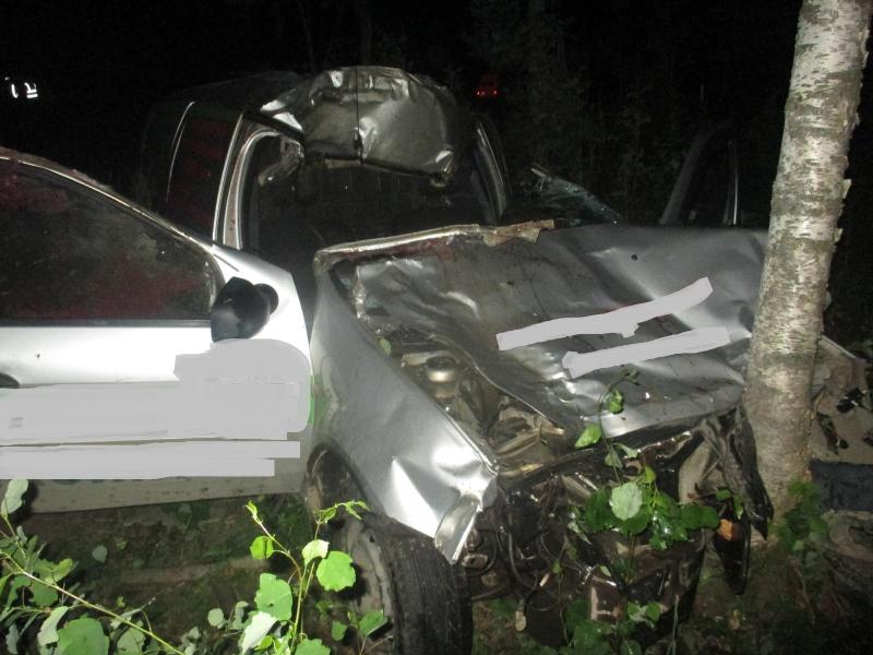 В Ярославской области иномарка сбила лося: один человек погиб, один ранен
