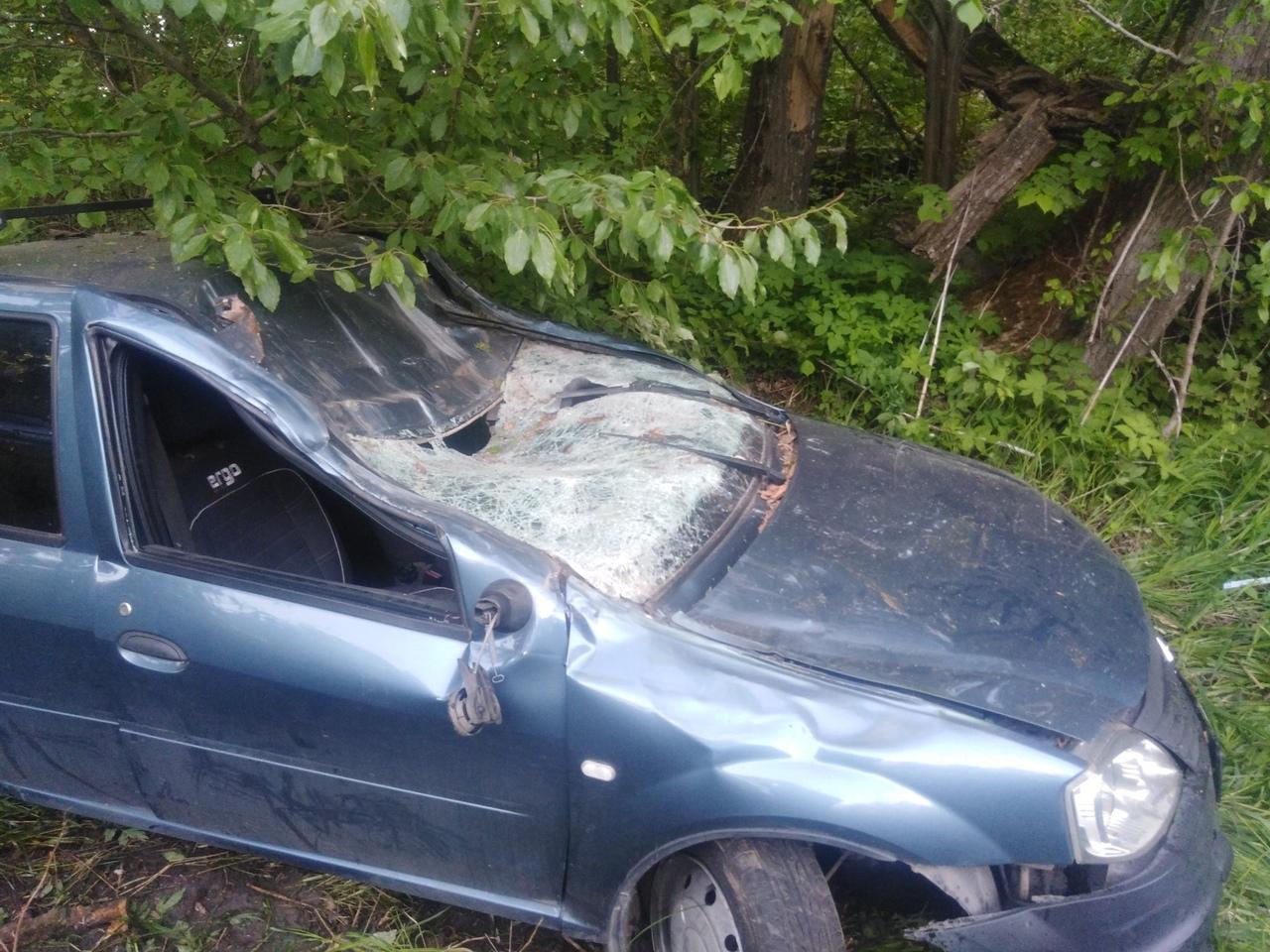 Под Рыбинском иномарка врезалась в дерево: погиб мужчина
