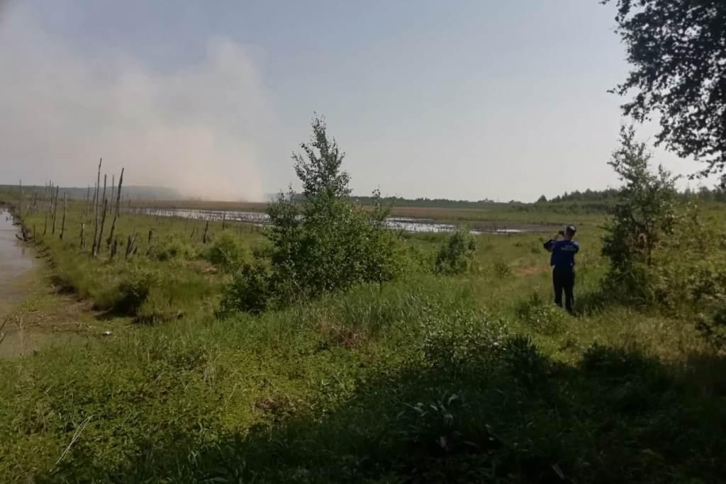 В Ярославской области усилили контроль за торфяными месторождениями, чтобы избежать природной катастрофы
