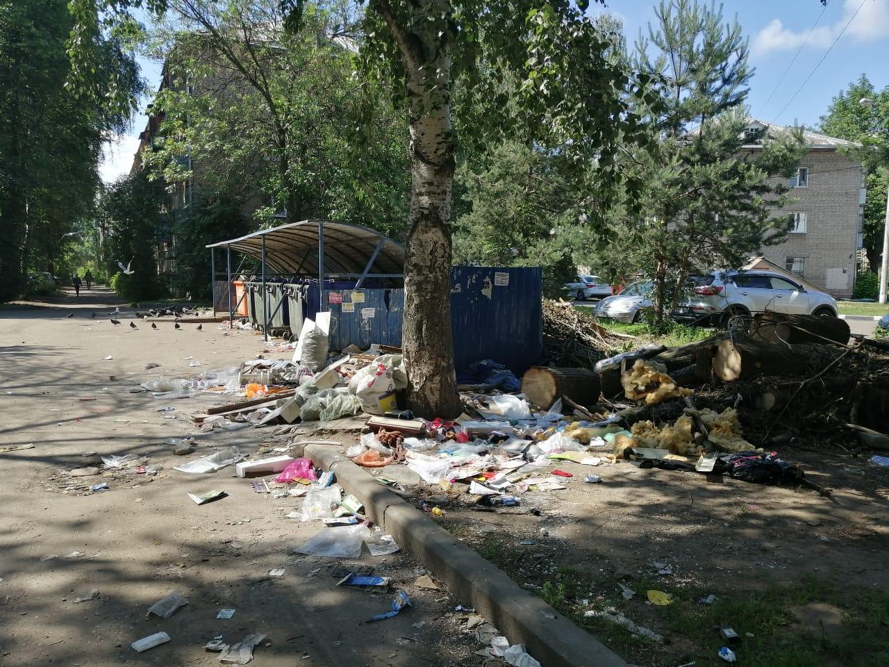 За захламление контейнерных площадок в Ярославской области будут жестко наказывать: какие штрафы
