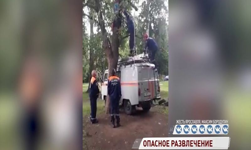 В Ярославле спасатели снимали ребенка с дерева