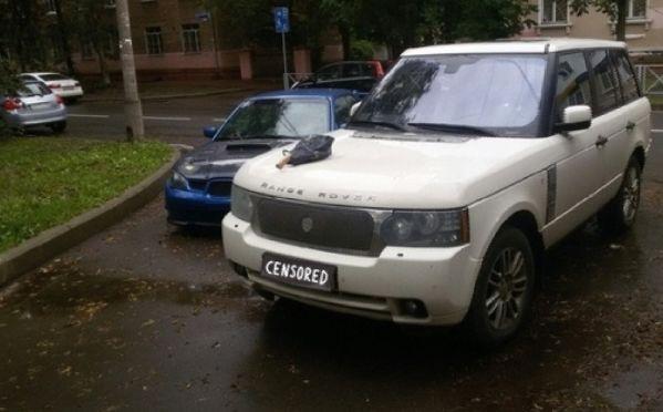 В Ярославле «народный мститель» воткнул топор в дорогую иномарку