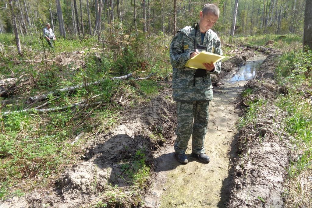 С начала года нарушители лесного законодательства оштрафованы на 2,4 миллиона рублей