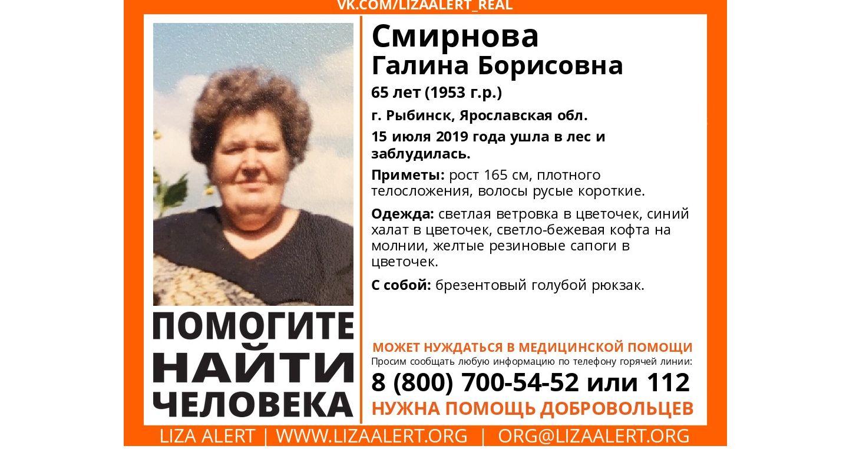 В Рыбинске разыскивают заблудившуюся в лесу пенсионерку
