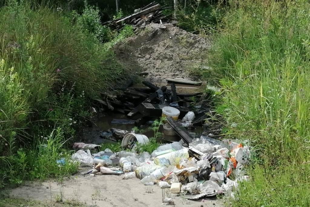 В Ярославской области в июле выявлено 20 нарушений природоохранного законодательства