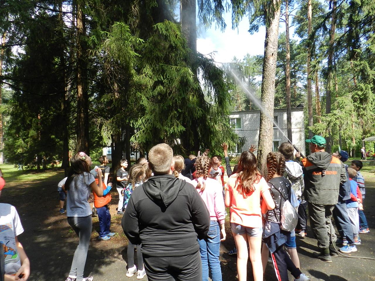 В оздоровительных детских лагерях региона проходит экологическая акция «Береги лес от пожара»