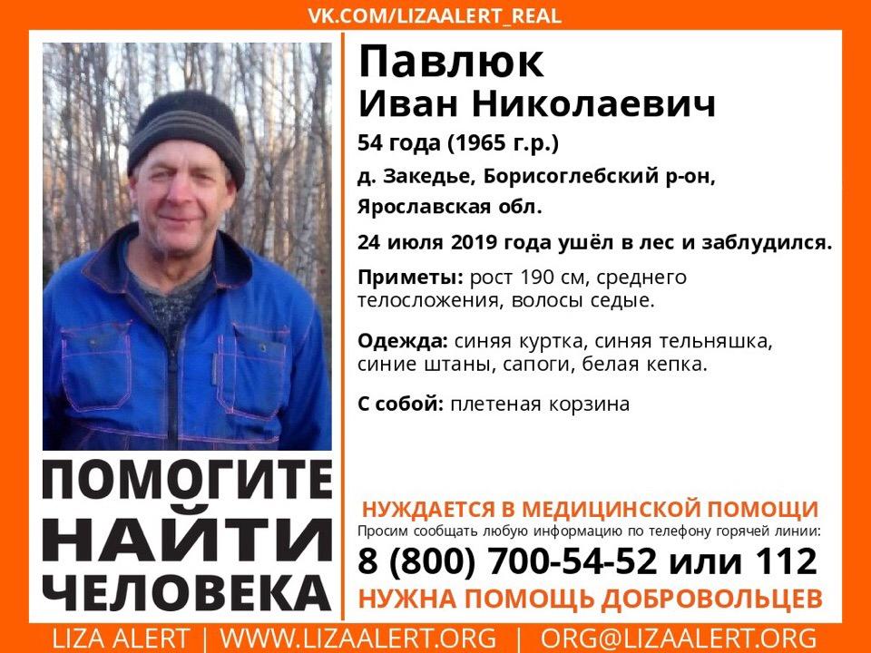 В Ярославской области ищут 54-летнего мужчину, заблудившегося в лесу