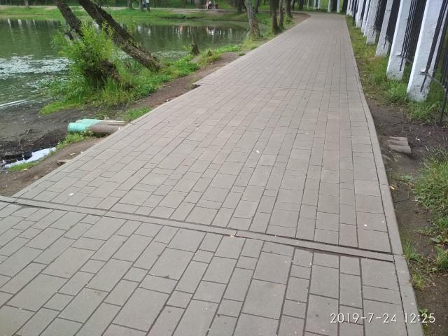 В Ярославле провели проверку по факту сброса сточных вод вблизи пруда в парке «Нефтяник» после жалоб в соцсетях