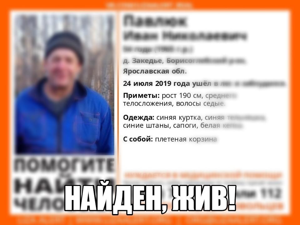 В Ярославской области нашли живым пропавшего 54-летнего грибника