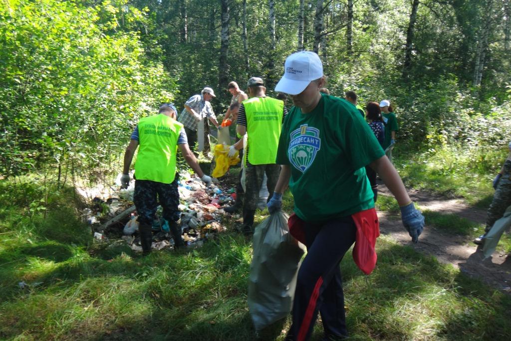В рамках акции «Очистим лес от мусора» ликвидировано 36 крупных свалок