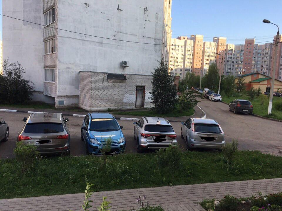 Война растениеводов: в Ярославле соседи крадут друг у друга кусты
