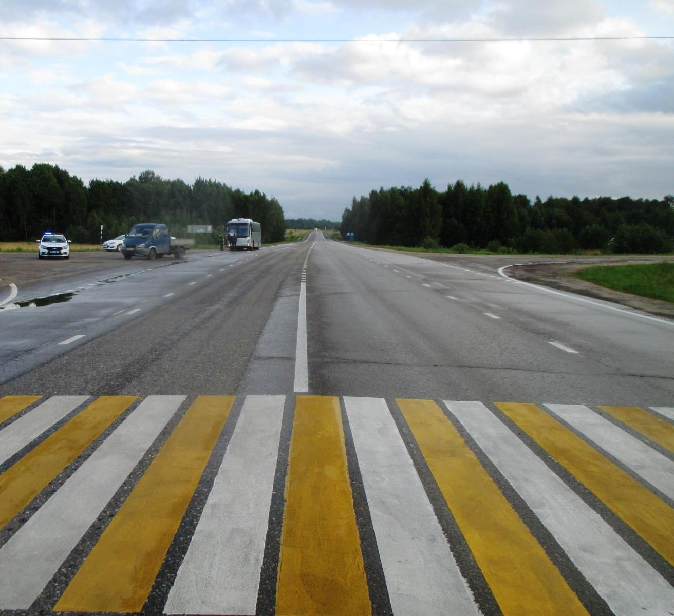 В Ярославской области водитель «Газели» сбил девушку