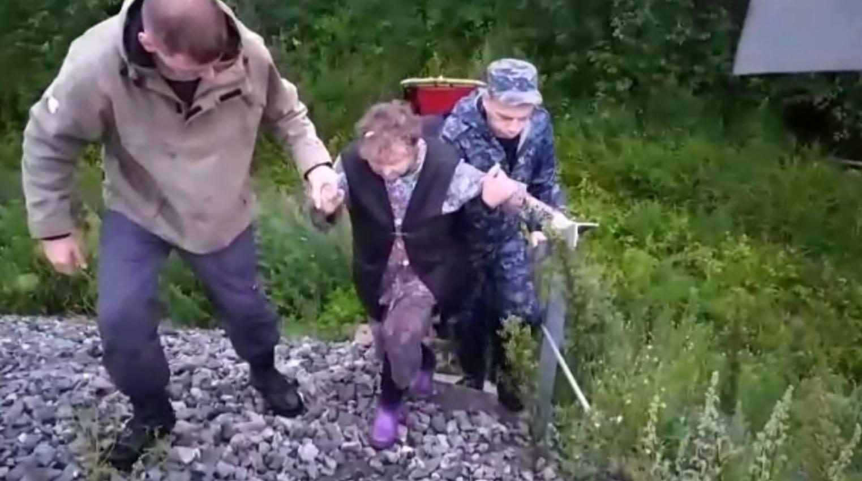 В Ярославской области полицейские с сиренами искали пенсионерку в лесу