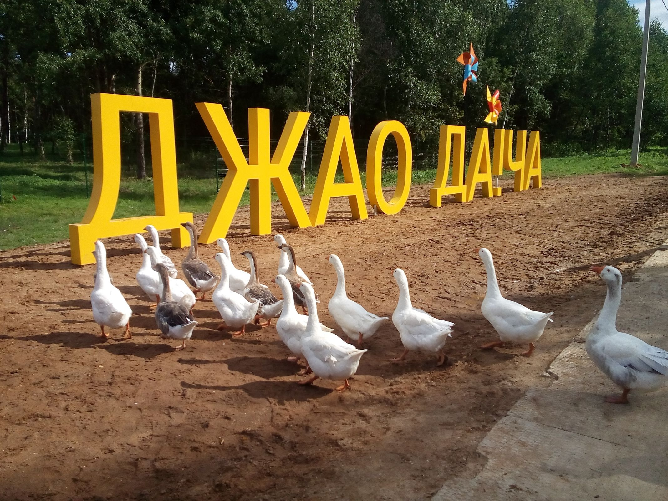 «Сплин», Дельфин, Noize MC выступили на фестивале в Ярославской области