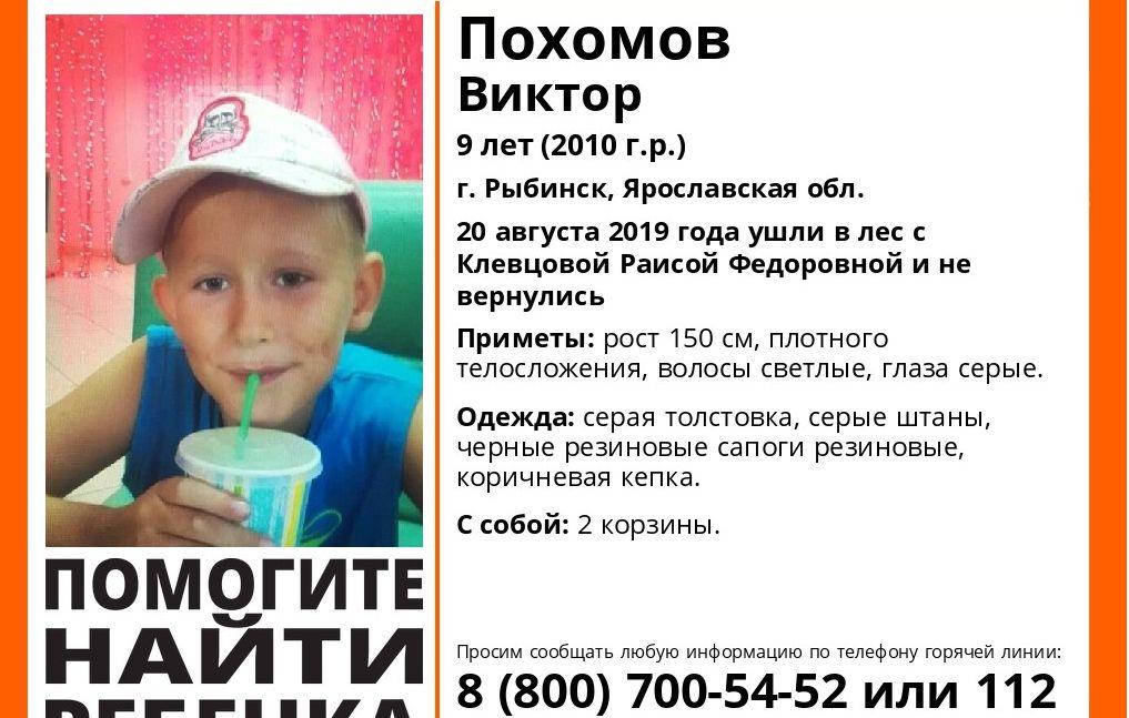 В Рыбинске в лесу пропали ребенок с бабушкой