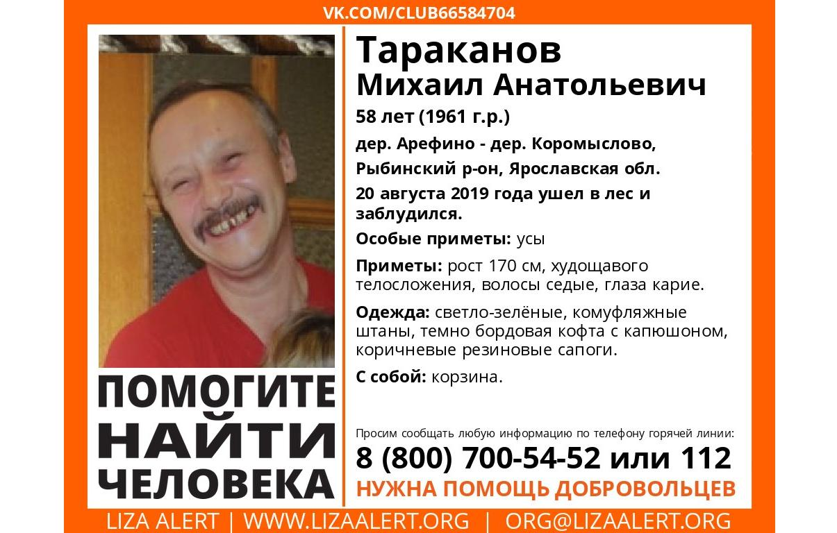В Ярославской области пропал ушедший в лес мужчина