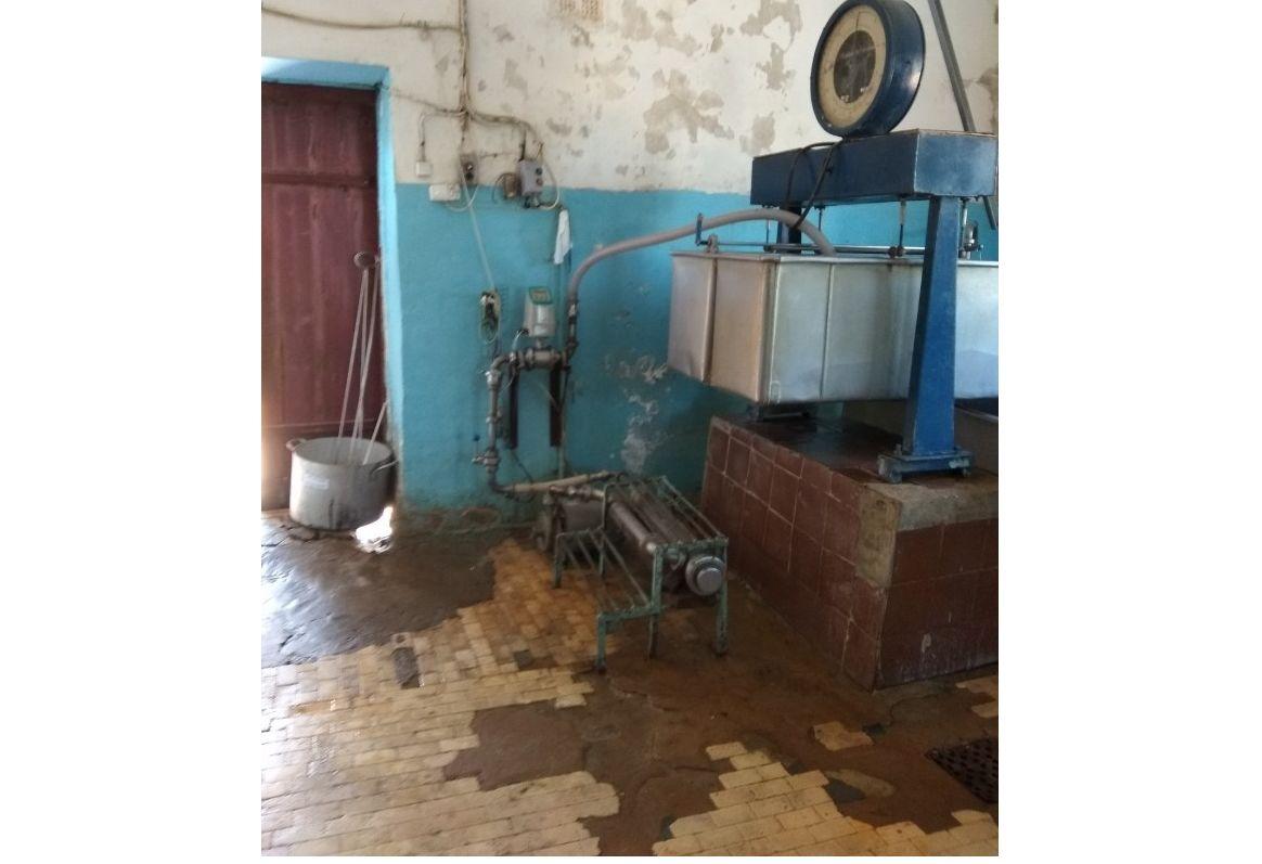 В Ярославской области предприниматели продавали опасное молоко
