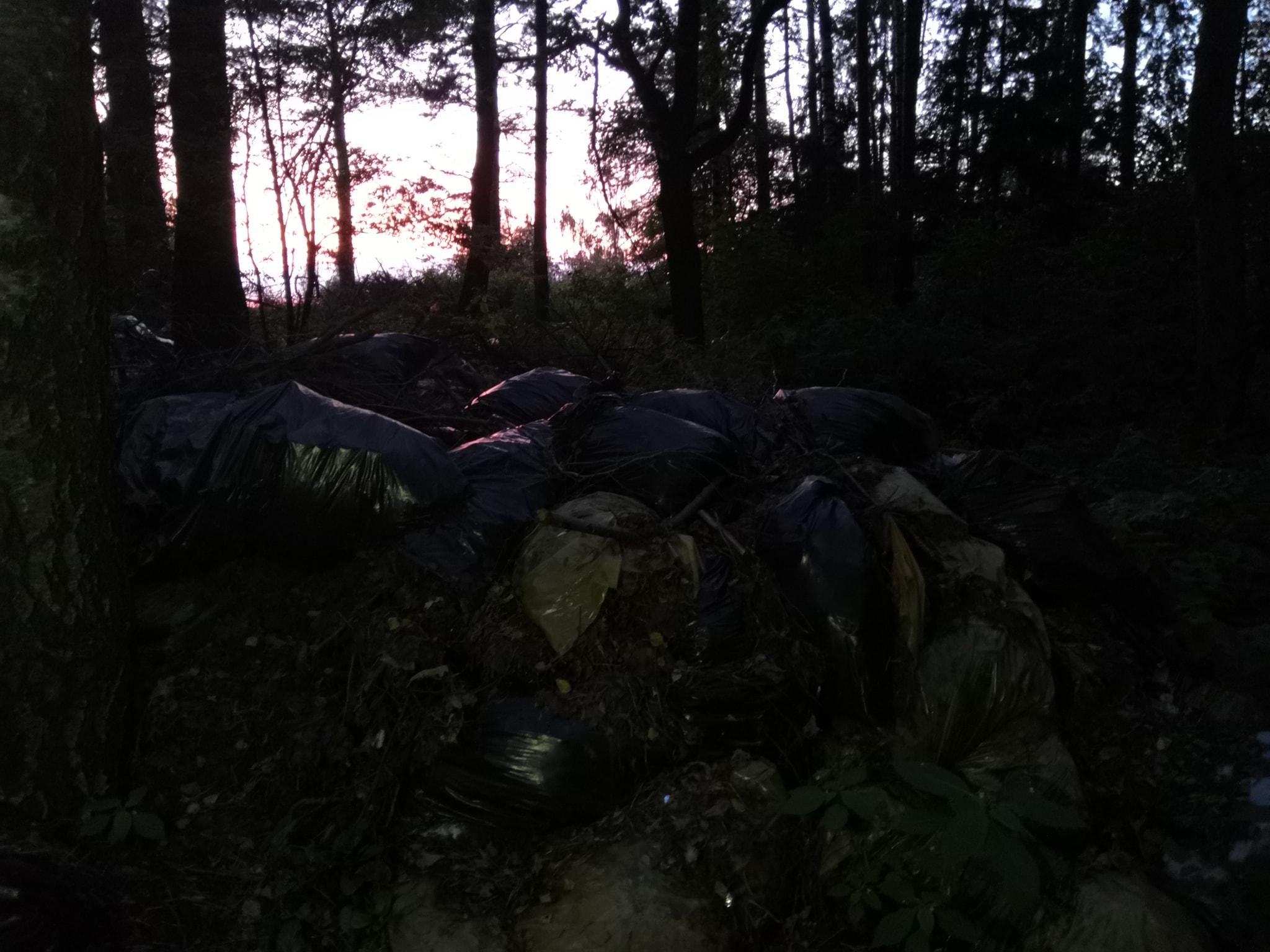 В Ярославле общественники нашли огромную зловонную свалку на берегу Волги