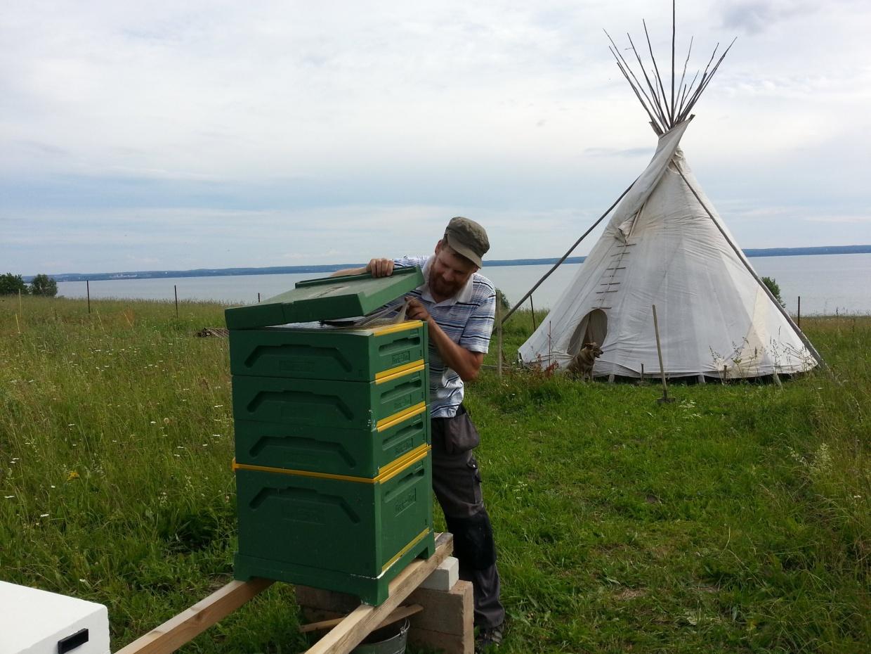 «Я в неправильной стране родился»: интервью со швейцарцем, который 8 лет разводит пчёл в Переславле